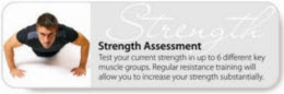strength assessment
