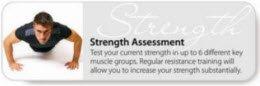 strength assessment